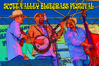SCOTT VALLEY BLUEGRASS FESTIVAL