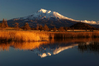 #47 - MT SHASTA REFLECTED (1:1.5)