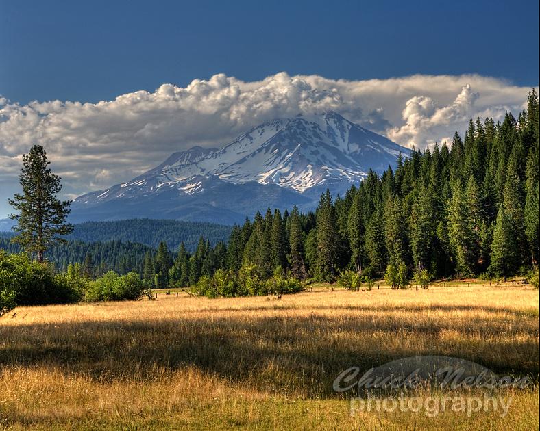 Mount Shasta Views